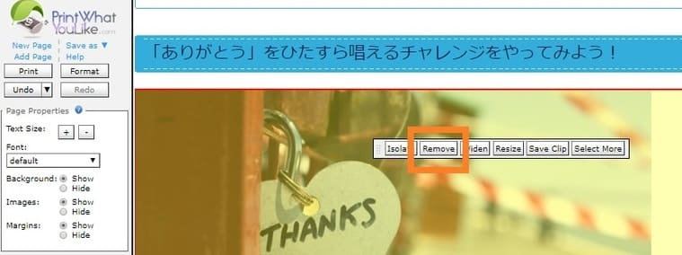 【画像】ブログを本文だけ印刷する方法:消したい画像を消す