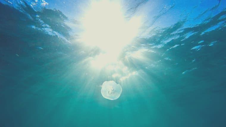 【画像】海洋深層水とは?